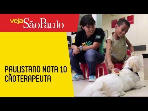 Paulistano Nota 10 – Cãoterapeuta