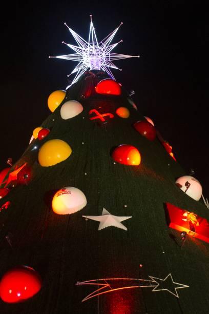 Árvore de Natal do Parque do Ibirapuera em 2014, com 54 metros de altura