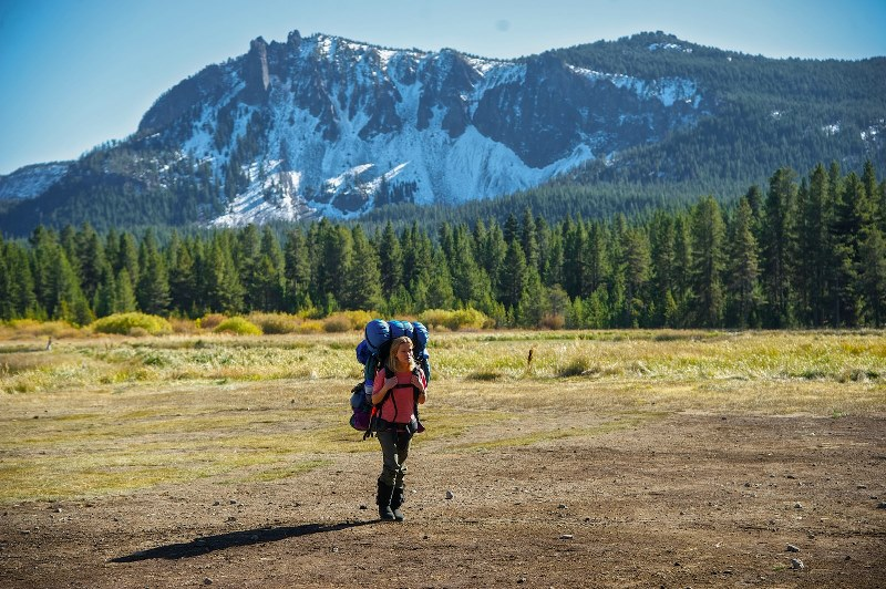 Livre: nova vida junto à natureza selvagem