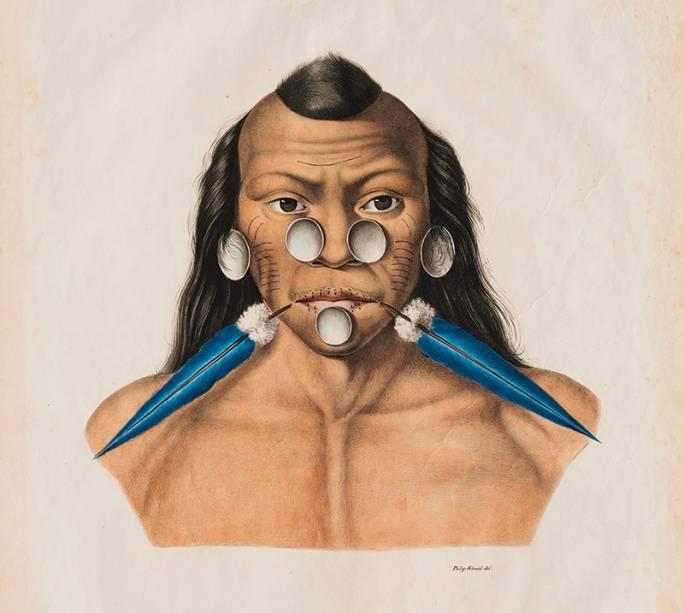 Spix e Martius: registros históricos em montagem moderna da Coleção Brasiliana, no Itaú Cultural