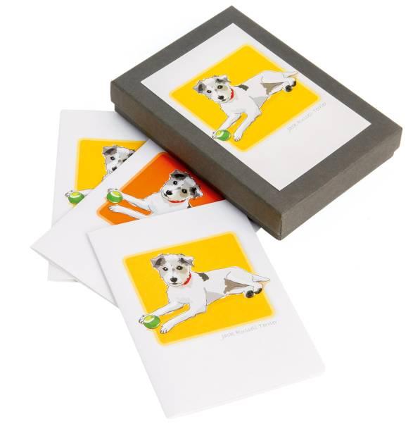 Caixa com seis cartões
