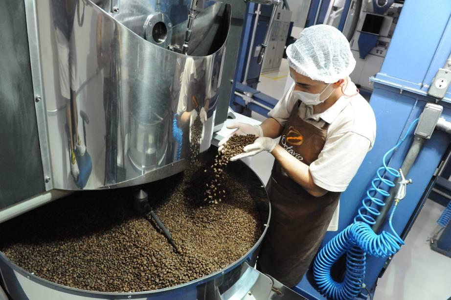 Da semente à xícara: curso aborda toda a produção de café
