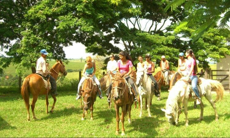 Pousada Mirante: cavalos para montaria