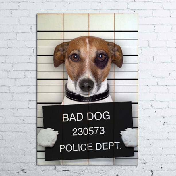 """Quadro de madeira Bad Dog, R$ 139,00, da <a href=""""http://www.designnmaniaa.com.br/siteNovo/"""" rel=""""Design Mania"""" target=""""_blank"""">Design Mania</a>"""