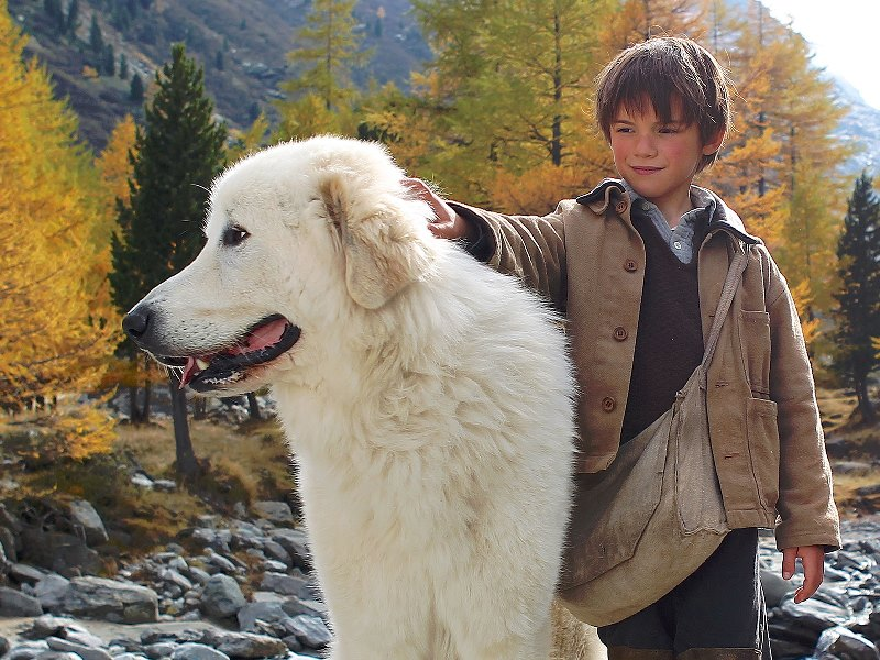 Belle e Sebastian: o garoto e a cadela gigante, amizade