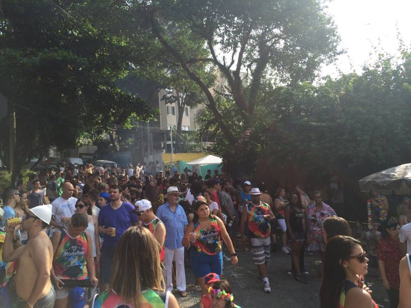 Foliões se concentraram entre as ruas Colonização e Arapiraca