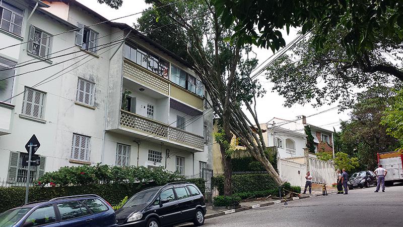 Árvore caiu sobre apartamento no Planalto Paulista na madrugada do dia 29 de dezembro de 2014; planta ficou escorada em prédio durante cinco dias