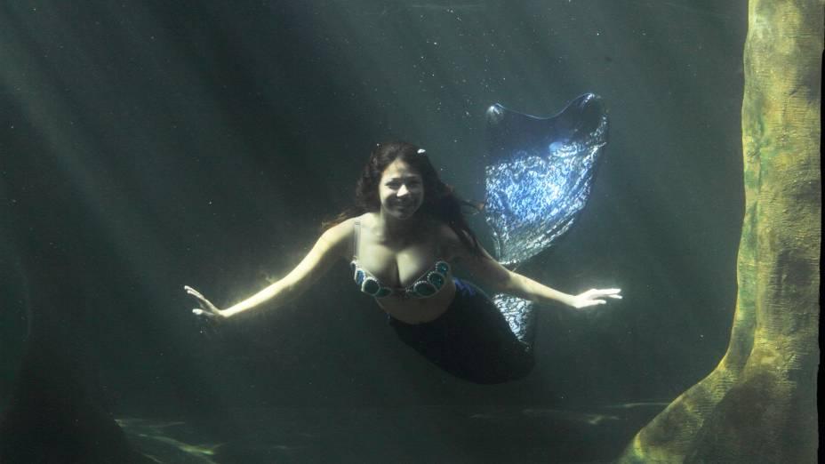 Do vidro do aquário, é possível cumprimentar a sereia, bem de pertinho