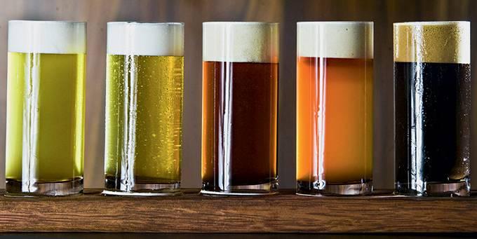 cervejaria.jpeg