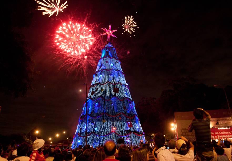 Natal Iluminado - Árvore do Parque do Ibirapuera em 2012