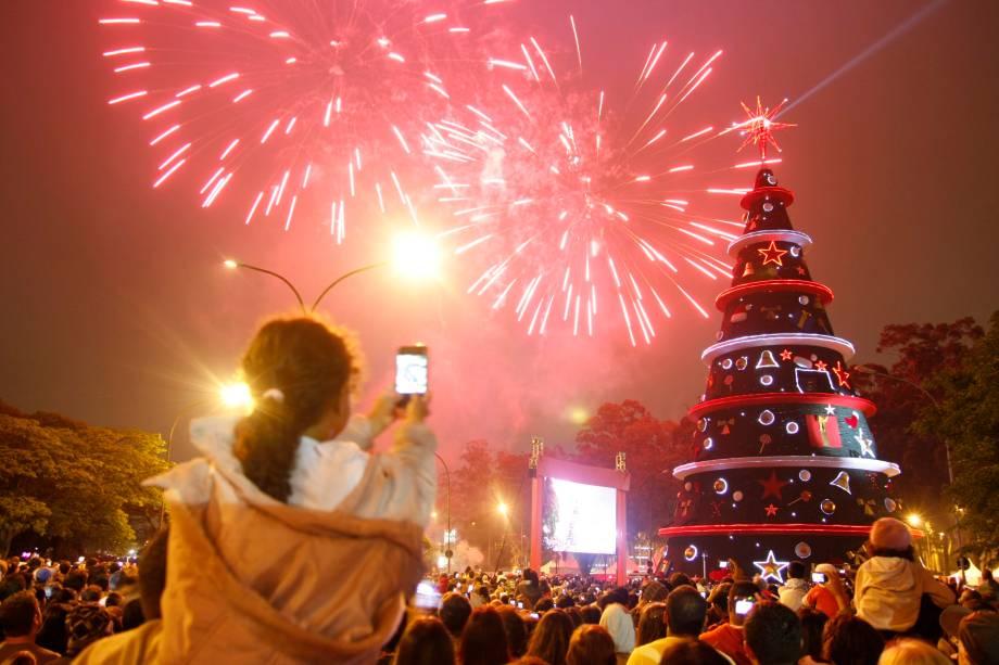 Natal Iluminado - Árvore do Parque do Ibirapuera em 2011