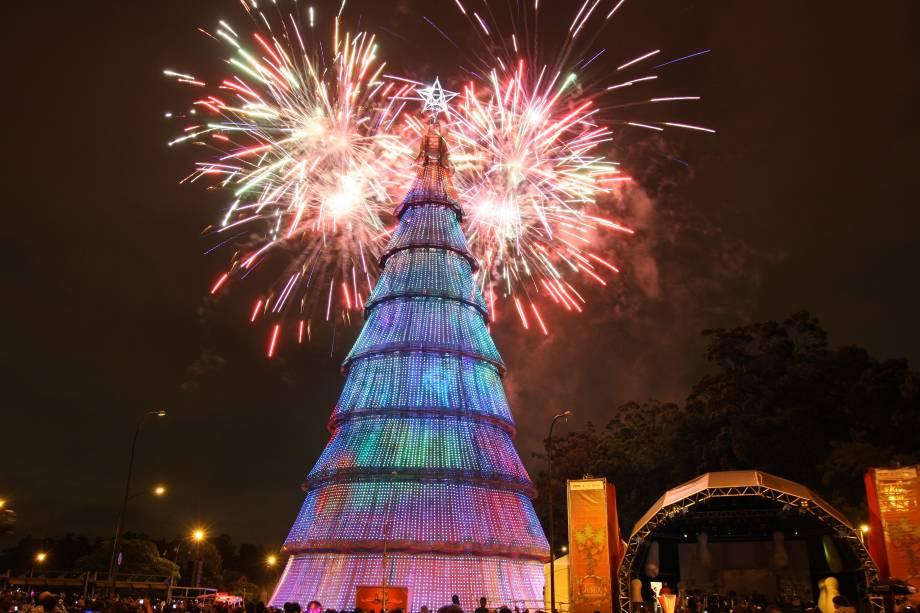 Natal Iluminado - Árvore do Parque do Ibirapuera em 2010