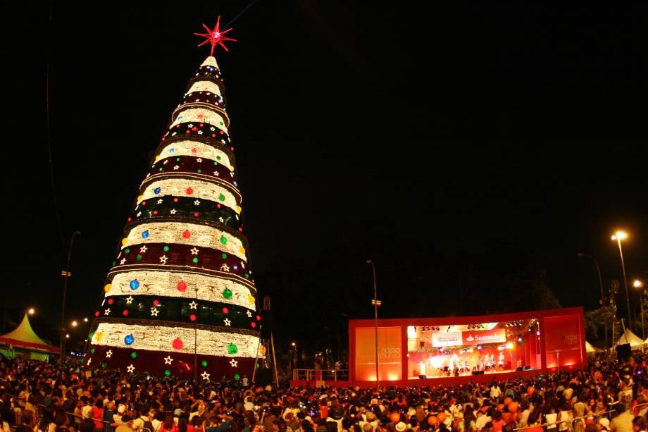 Natal Iluminado - Árvore do Parque do Ibirapuera em 2008