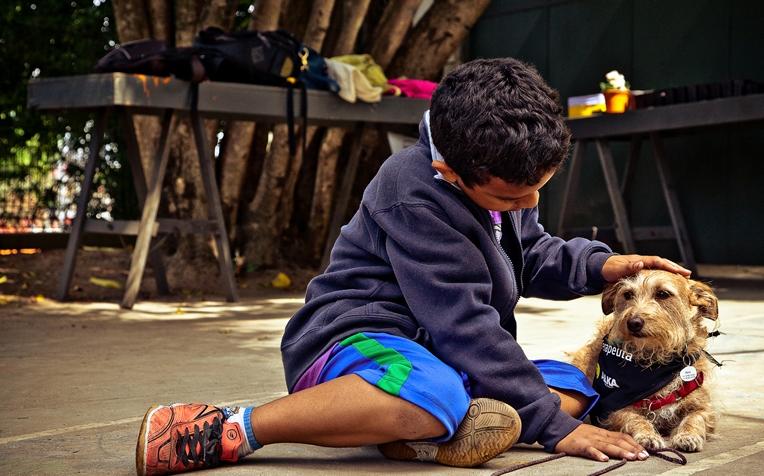 O vira-lata Nino com garoto do Núcleo Assistencial Irmão Alfredo