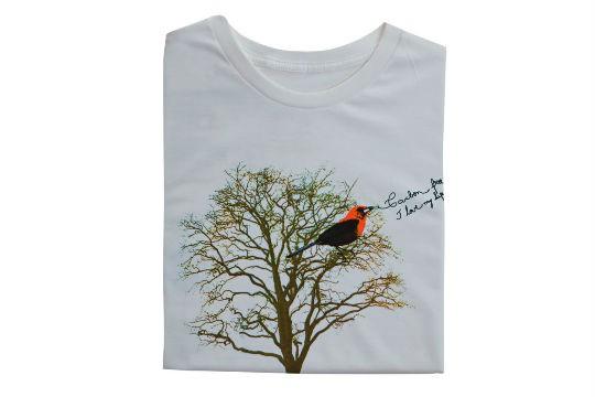 Camiseta de algodão orgânico, R$ 68,50. Tiê, Rua Harmonia, 218, Vila Madalena, tel.: 3032-4345, www.tiemodaecologica. com.br.