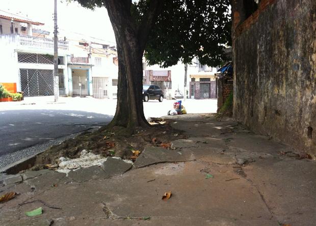 Rua Vergueiro, na altura do número 5715: raiz de árvore levantou e quebrou o piso do passeio