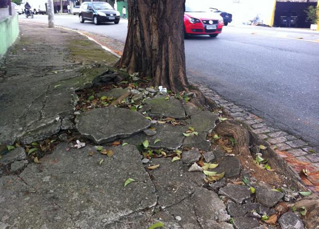 Rua Vergueiro, na altura do número 8618: raiz de árvore monstruosa destroçou boa parte do calçamento