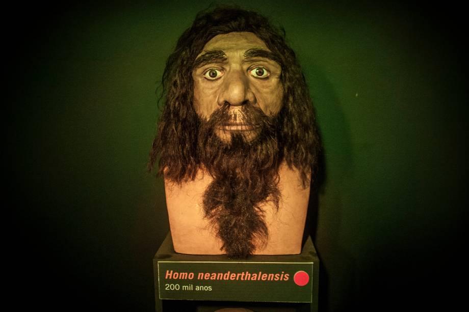 As reconstituições foram inspiradas em modelos exibidos em locais como o Museu Americano de História Natural, em Nova York