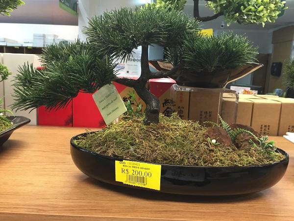 Mini jardim japonês (200 reais)
