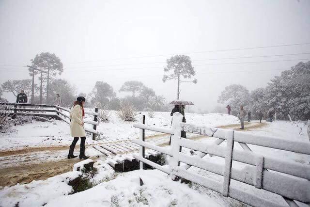 Neve: Nevou no sul do Brasil e frio chegou a -8 graus: veja vídeos | VEJA SÃO PAULO