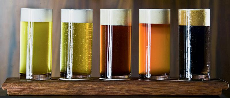 Degustação da Cervejaria Nacional: cinco versões da bebida