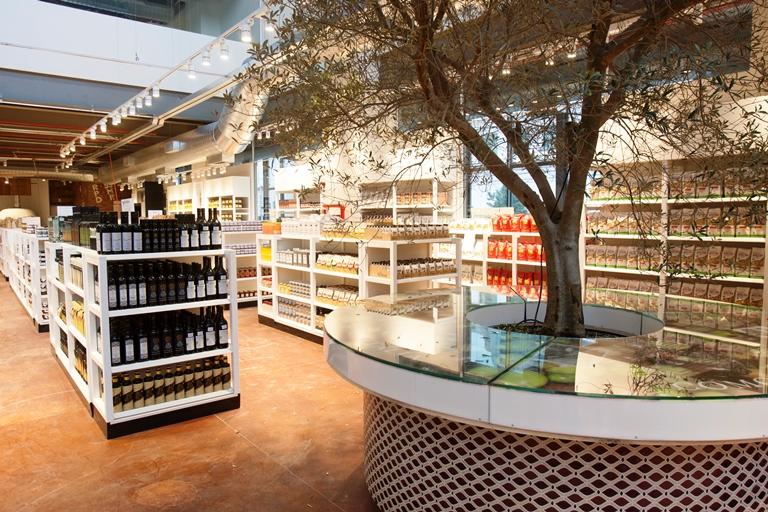 Setor de azeite: com uma oliveira vinda da Vinícola Guaspari