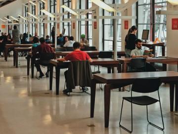 Refúgio no centro: o tranquilo espaço de leitura da Biblioteca Mário de Andrade