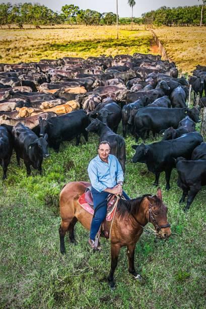 Iglesias Filho: 5000 cabeças de gado