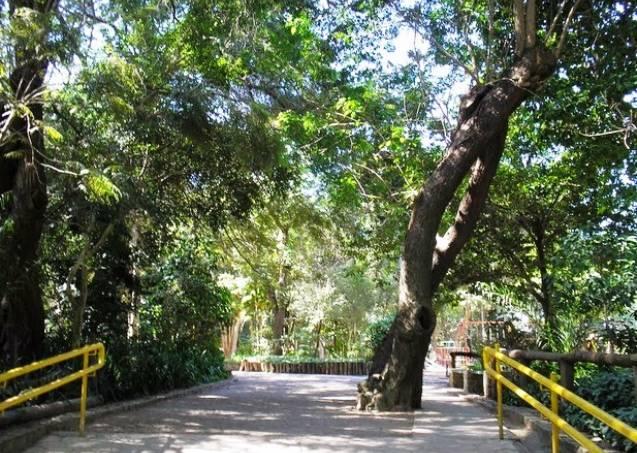 Parque Nabuco
