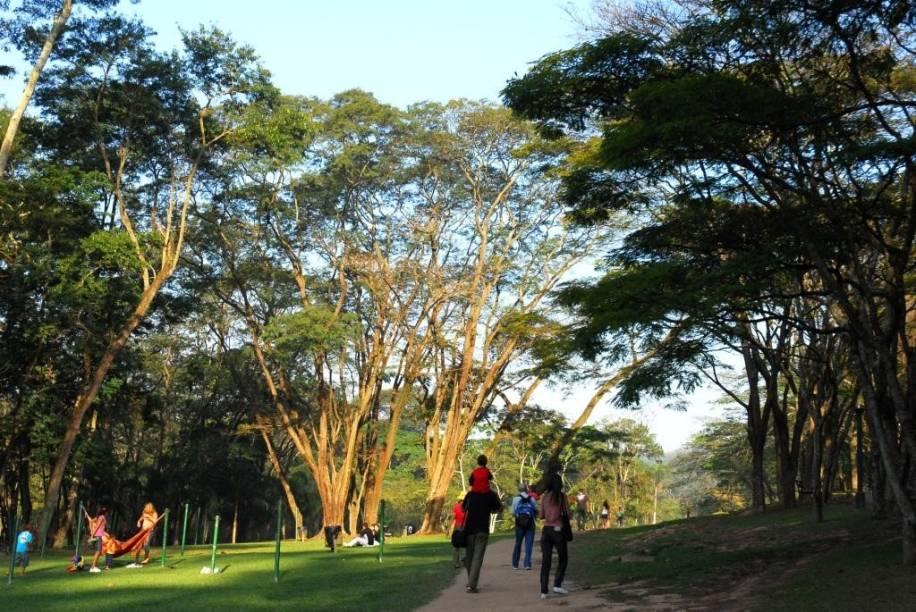 Parque do Carmo é uma das opções para os pais esportistas
