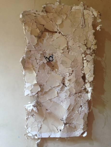 A borboleta de Franck Scurti parece sair da parede do hospital