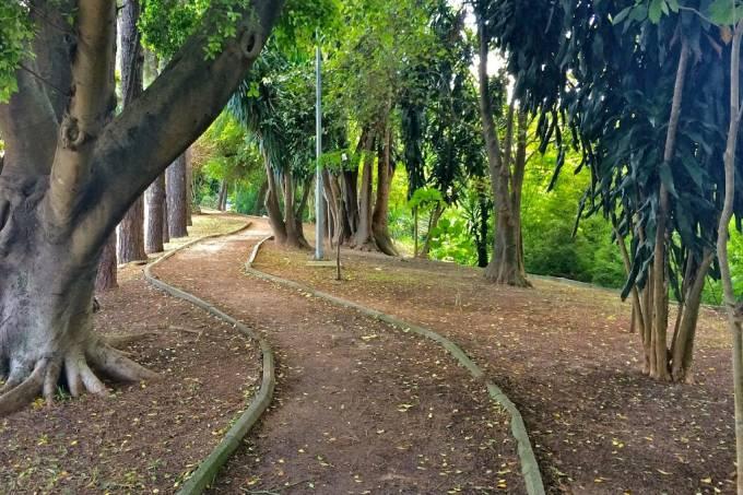 Parque Sena