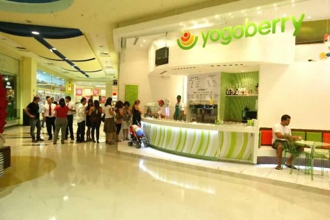 Iogurte Yogoberry