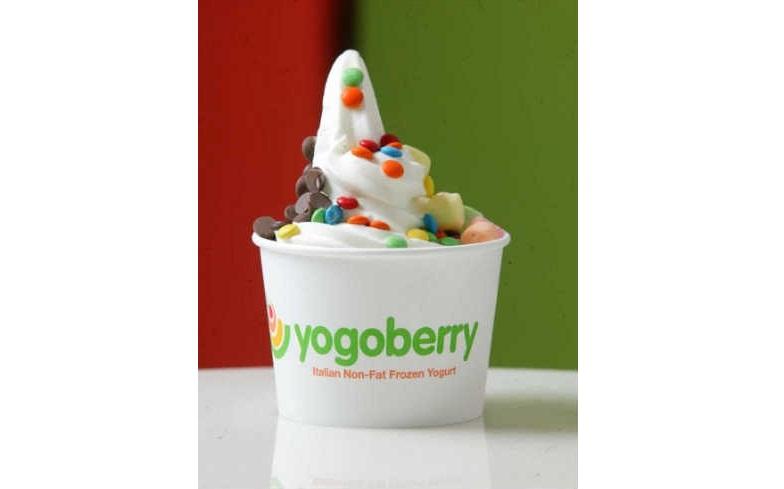 Yogoberry - Frozen Yogurts