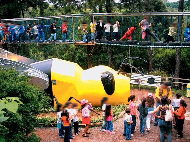 Abelha com 18 metros de comprimento