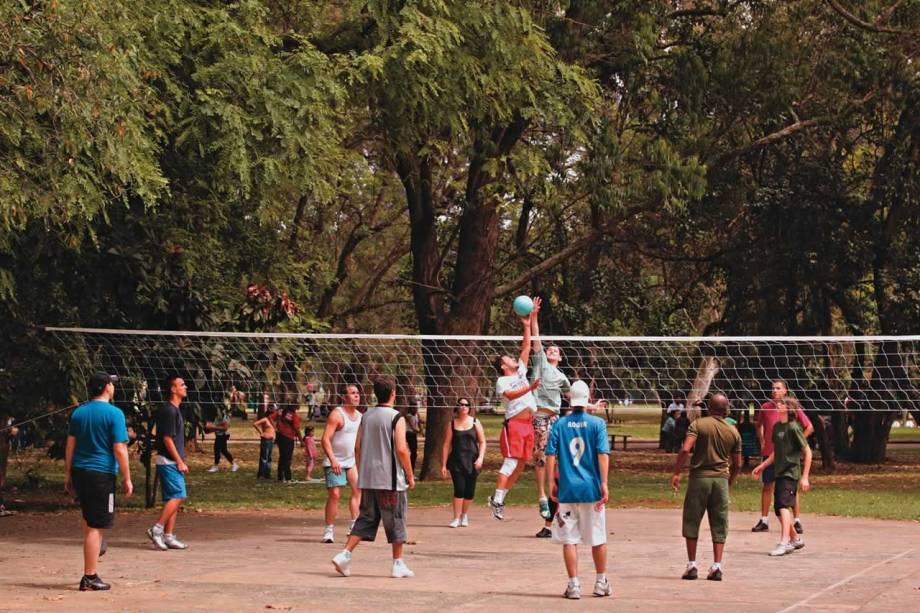 Parque do Ibirapuera: academia a céu aberto