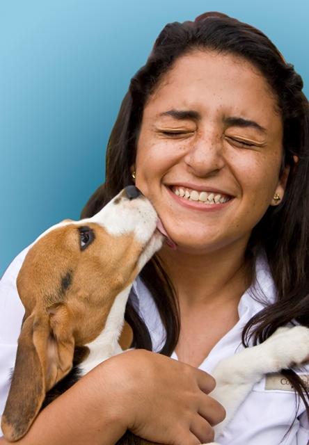 Cachorro lamber rosto