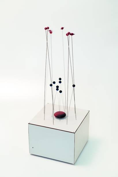 Objeto Cinético (2000)