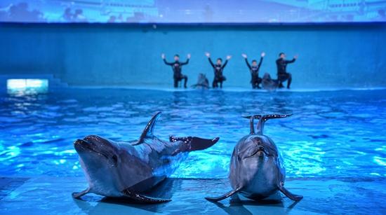 Parque aquático pretende ser o maior do mundo
