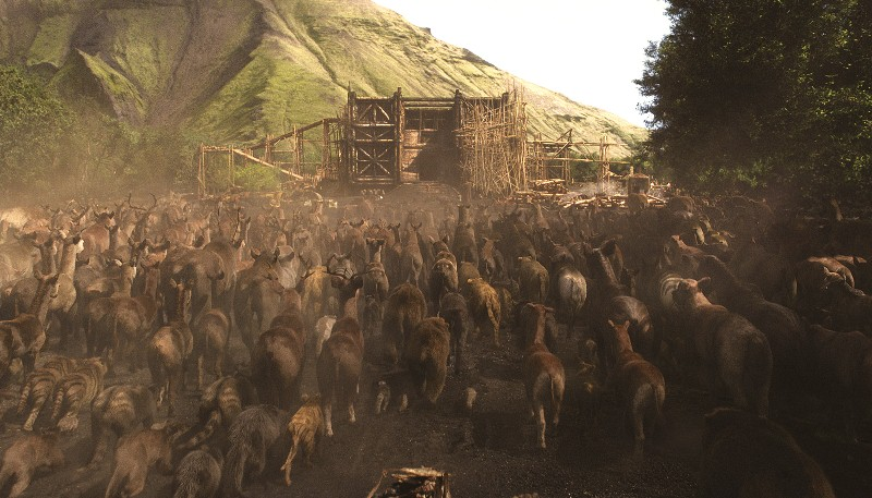 Noé: ele tem a tarefa de construir uma imensa arca para abrigar os animais
