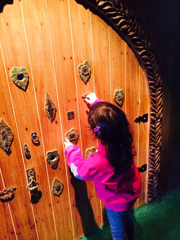 Porta com múltiplas fechaduras (Foto: arquivo pessoal)