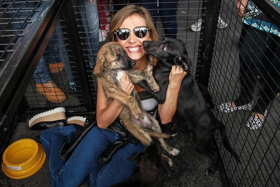 AgNews - Luisa Mell comemora 32 adoções de cães e gatos em três horas de evento no ParkShoppingSãoCaetano em São Paulo.07-11-2015Foto: Raphael Castello/AgNews