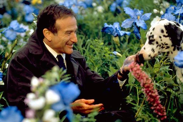 1998 - Buscando a esposa no além no drama Amor Além da Vida