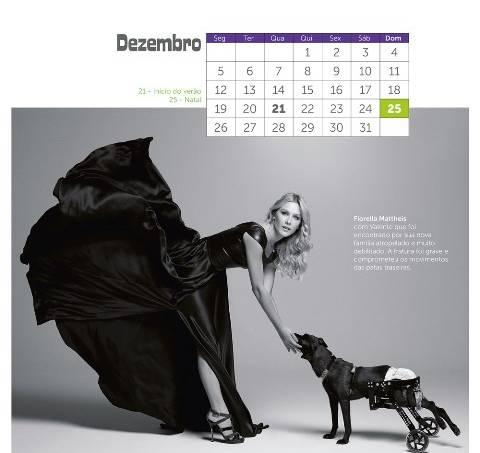 calendario2016_amparanimal190-jpg-jpeg