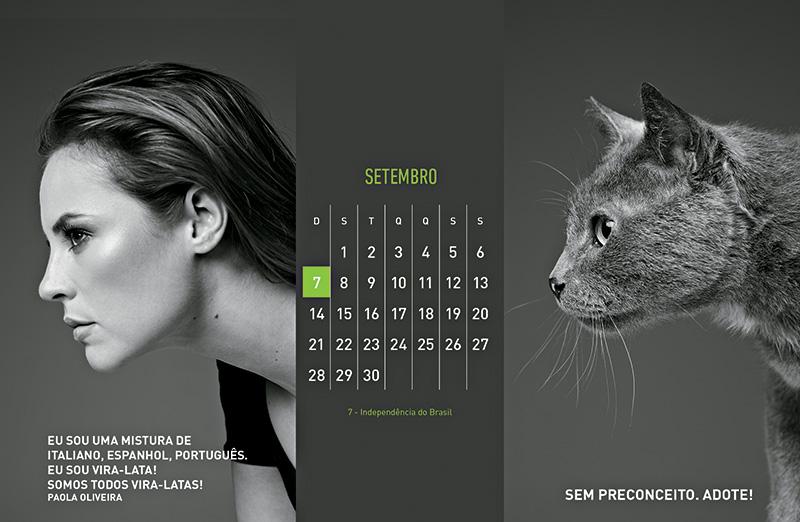 calendarioAMPARANIMAL201415.jpg