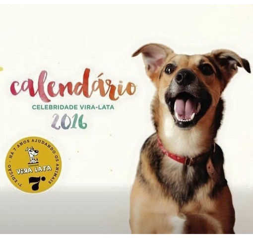 Capa do calendário do Celebridade Vira-lata: apenas cães sem raça definida (Foto: Divulgação)