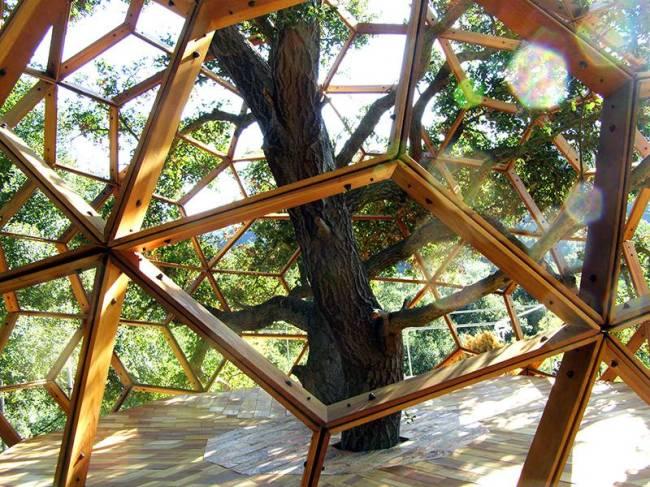 Casa na árvore - meditar 2