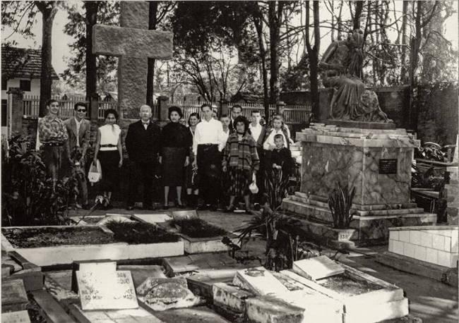 cemitério pet ibirapuera 2387