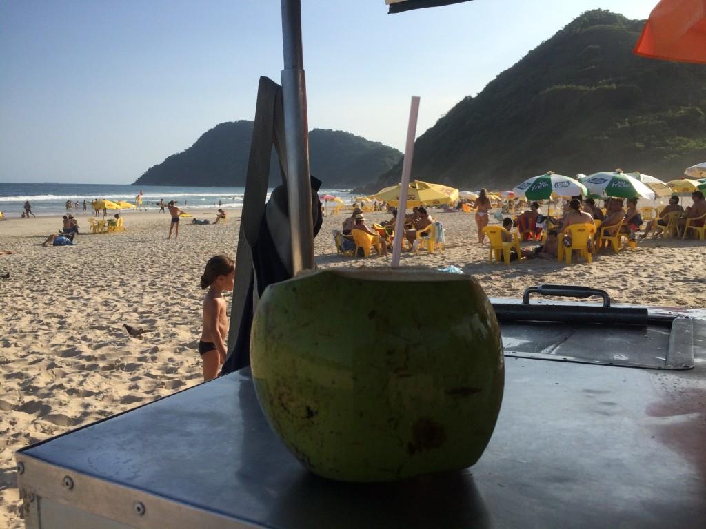 Preço do coco no litoral paulista vai de 4 a 8 reais (Foto: Fábio Lemos Lopes)