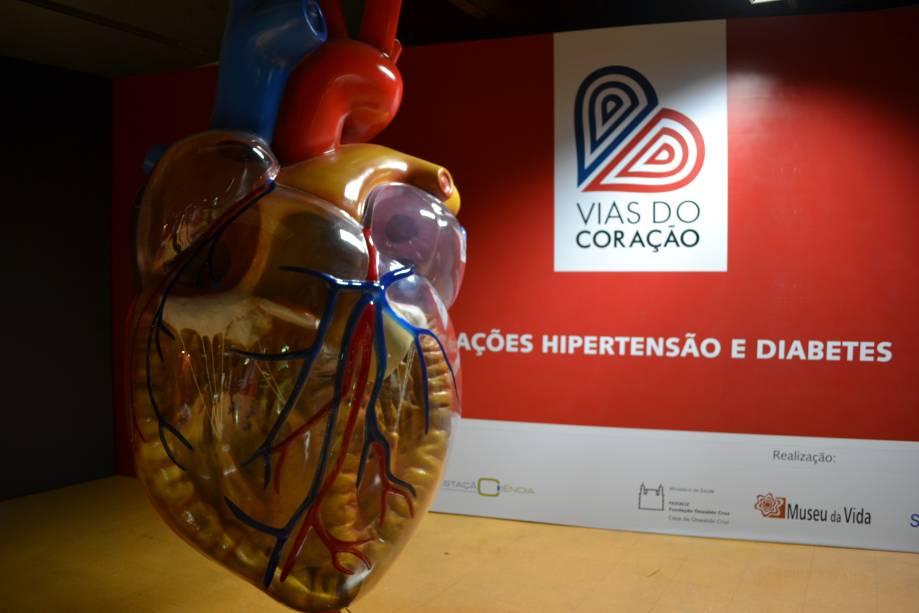 Mais de 2 metros: coração gigante permite que as crianças entendam o funcionamento do órgão